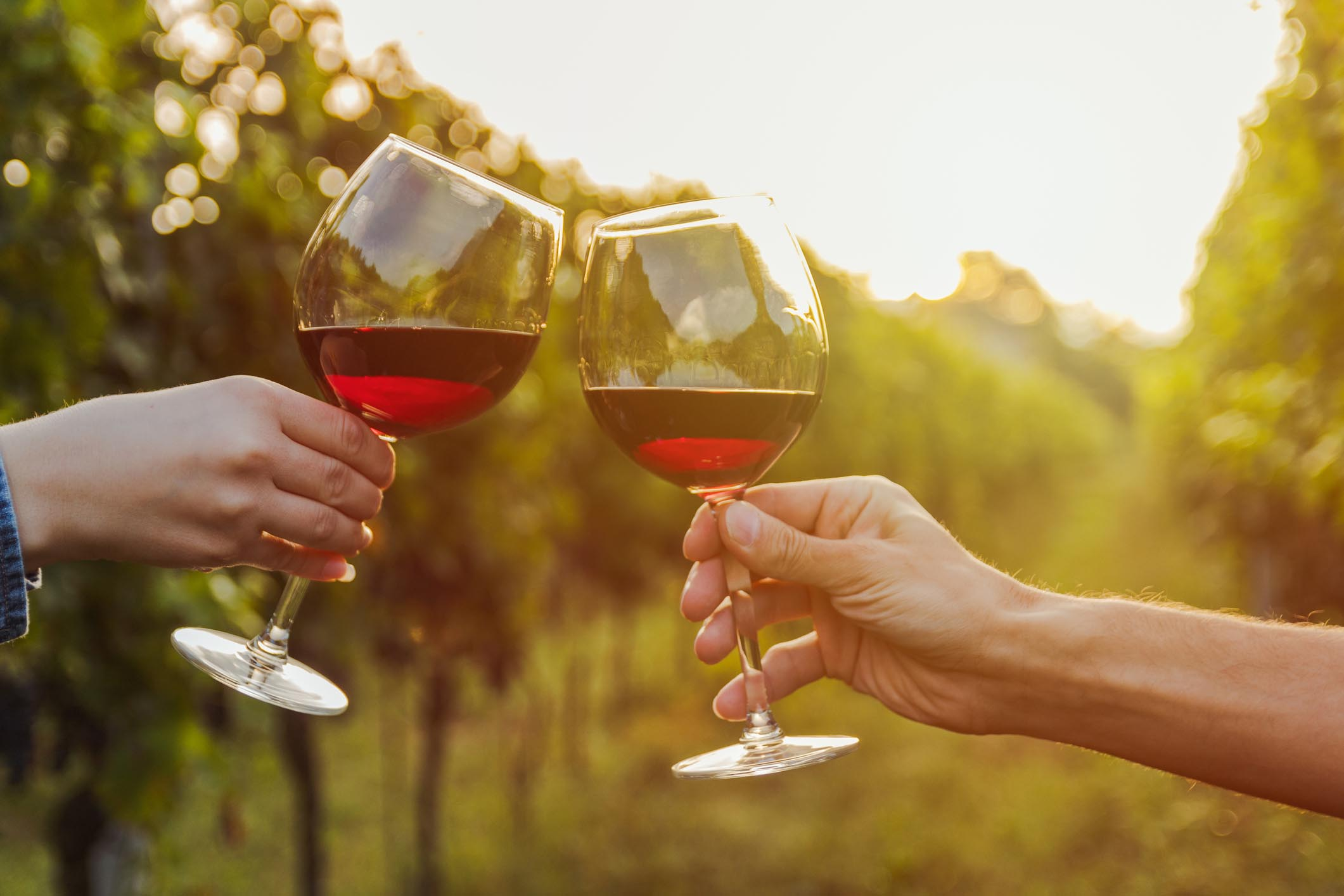 Dispelling The Misconceptions About Wine Tours in Perth