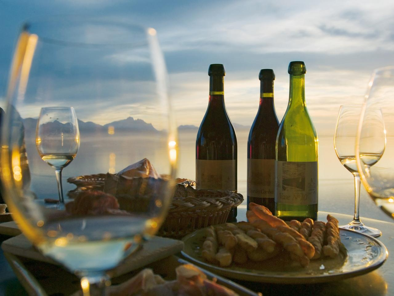 Dispelling The Misconceptions About Wine Tours